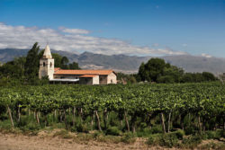 Alte Kirche © Wines of Argentina