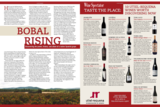 Wine Spectator review in Bobal
